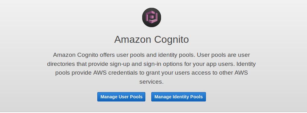 Cognito Welcome
