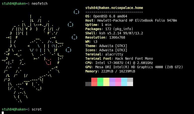 Haken OpenBSD Terminal